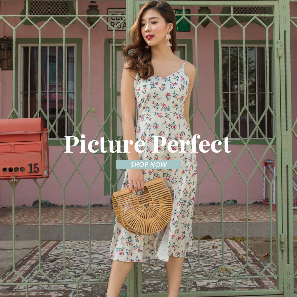 Picture Perfect Collection Launch