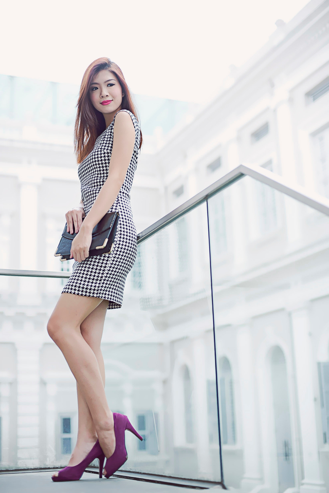 Alessia Houndstooth Dress