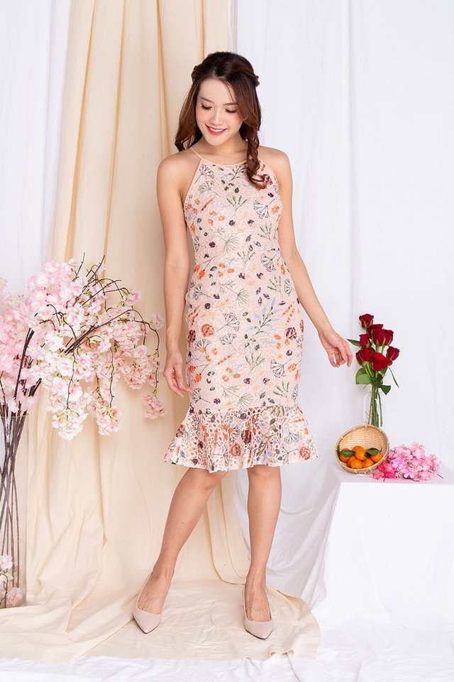 Colours of Celebration Lace Mermaid Dress in Peach